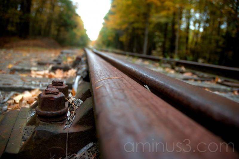 Railroad in autumn