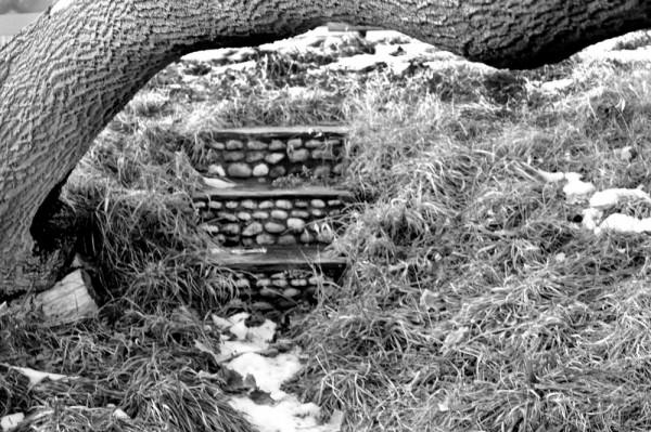 Willard Beach steps