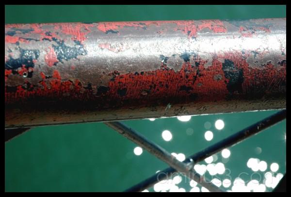 Bug Light railing