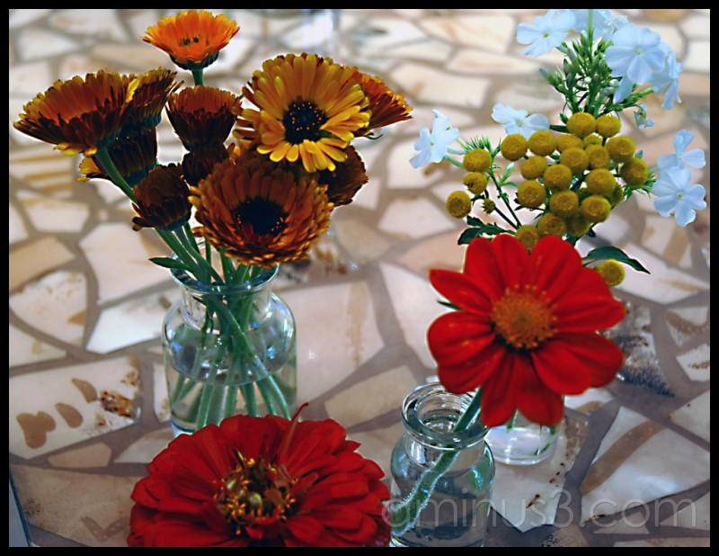 Pop art flower show