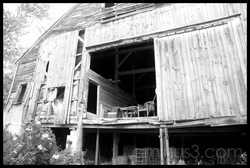 Sitting in the barn