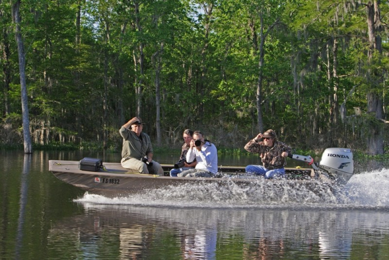 speeding bateau on the atchafalaya