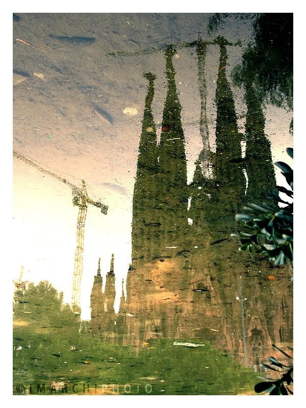 Gaudi's Nature Inspiration