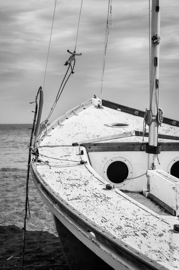 Encarando el mar (Facing the Sea)