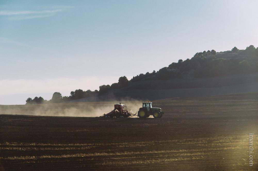 Preparando la siembra (Preparing seeding)