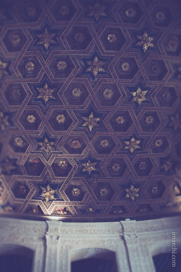 Techo estrellado (Starry ceiling)