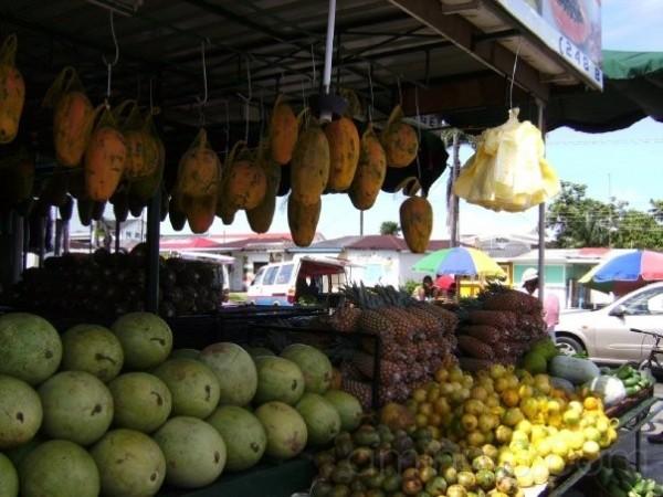 Fruits in Georgetown Guyana