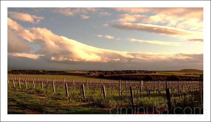 South Australian landscape