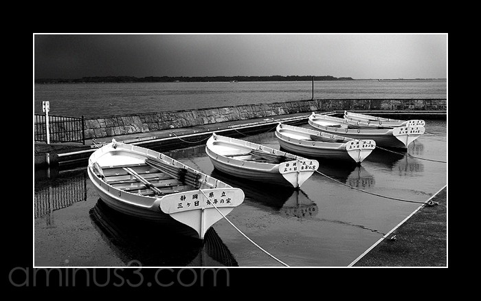 Row boats in a harbour