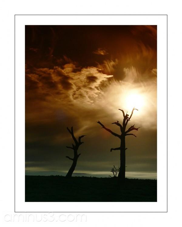 Sunrise at Strathalbyn, SA