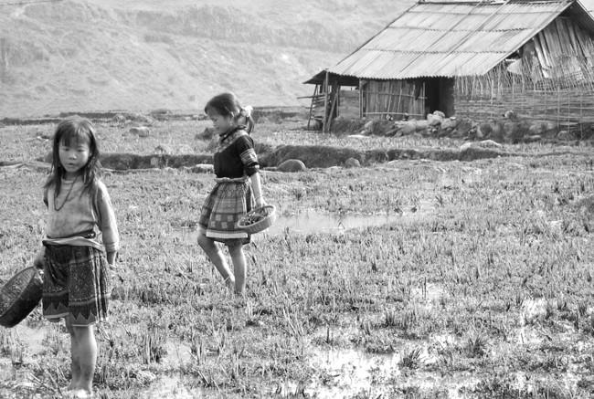 Sisters farming in Vietnam