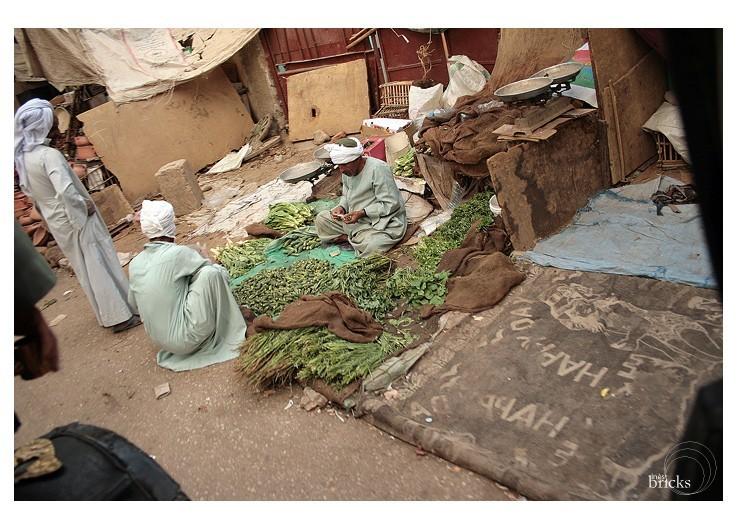 Souk - marchand d'herbes