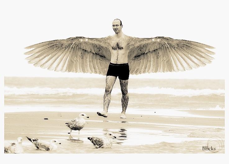 L'homme oiseau