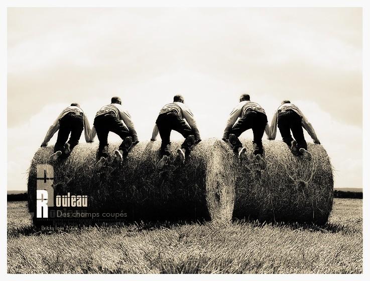 Des champs coupés...