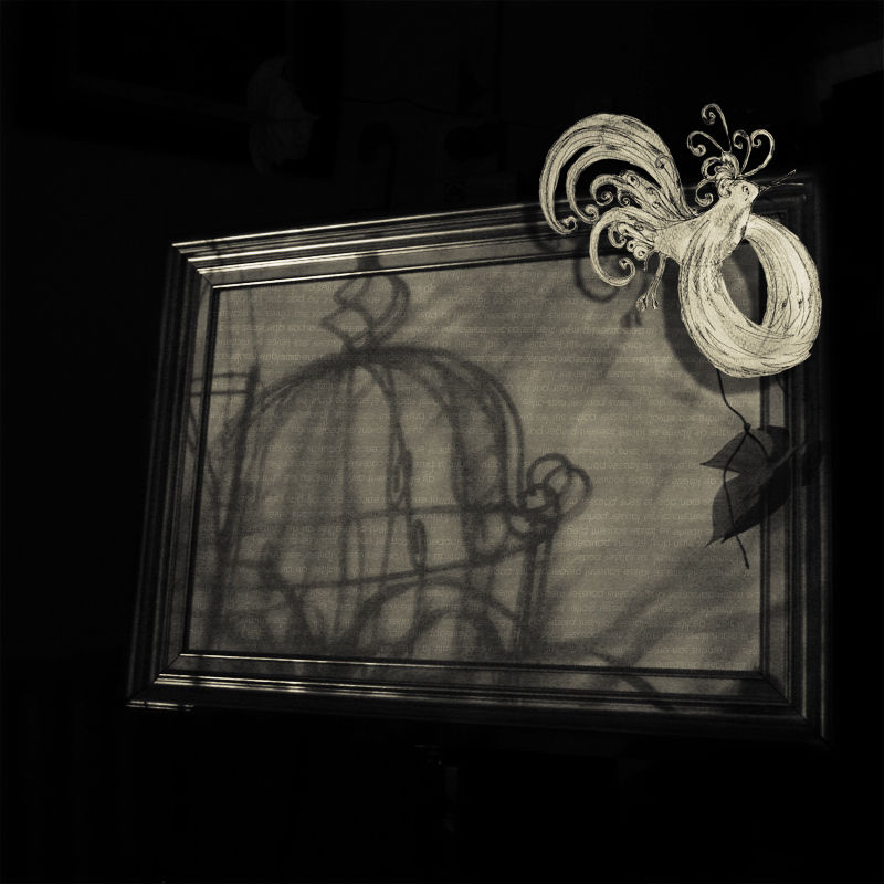 De sa cage dorée il ne restait que l'ombre ...