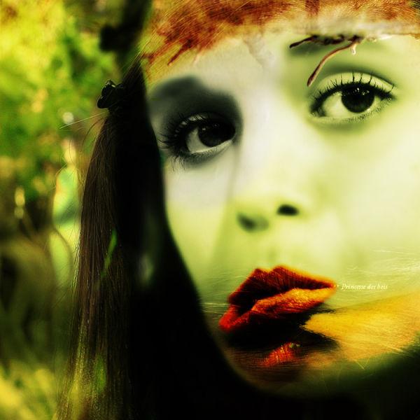Princesse des bois (2)
