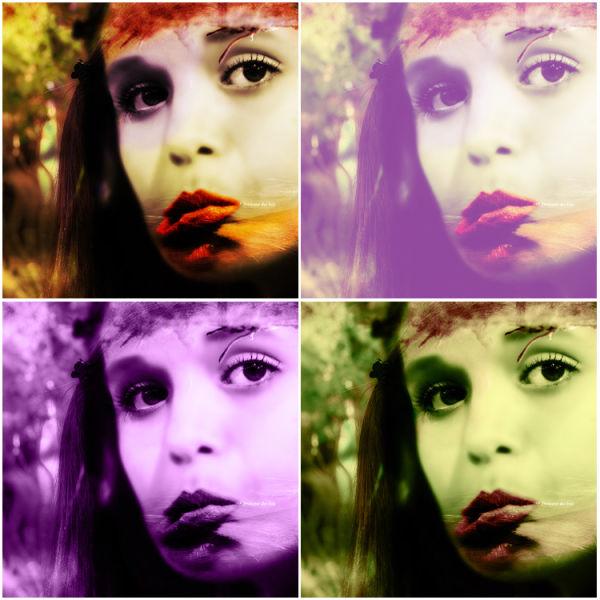 Princesse des bois (variations)
