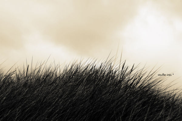 J'aime l'idée que l'horizon ne soit pas lisse !