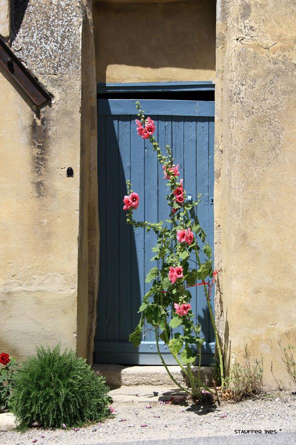 Les portes qui s'ouvrent fleurissent ...