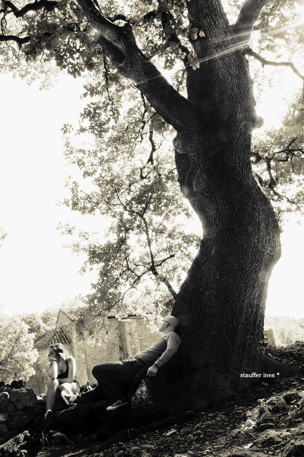 S'adosser à l'arbre des souvenirs.