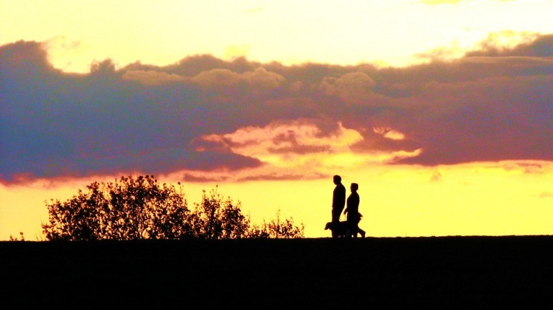two people and a dog walking at dusk