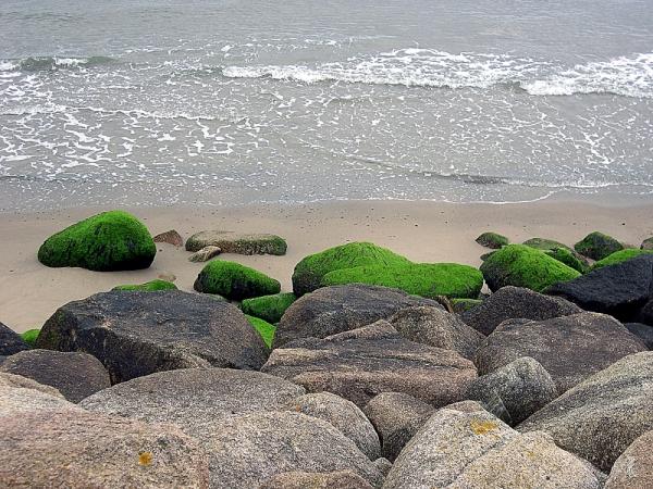 Shores of Ireland