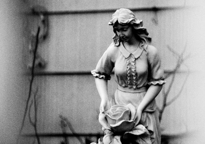 Statue of a girl with a rose