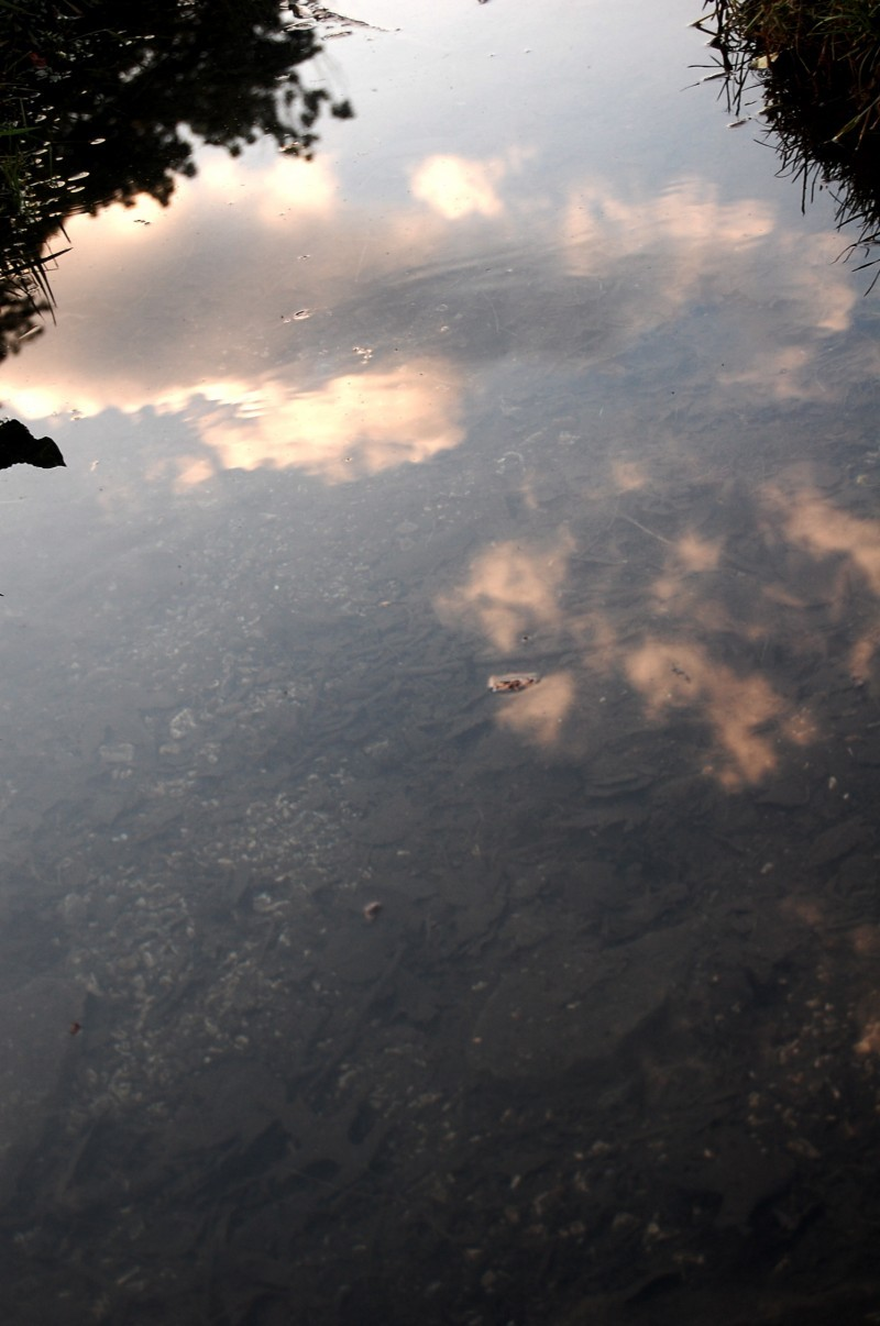 The Sky Within Water