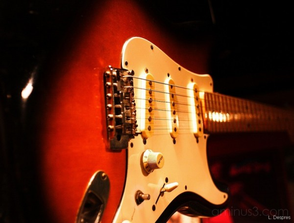 Fender Guitar (shoot with Pentacom 28 mm)