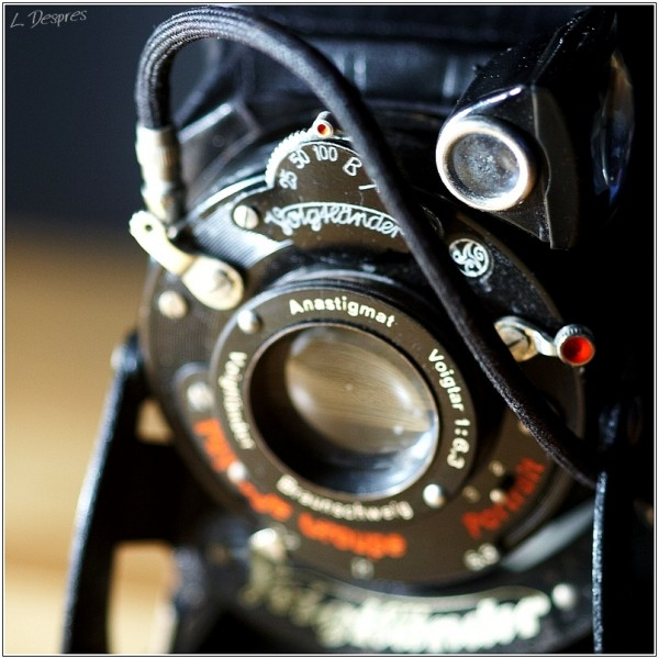 old voigtlander close up
