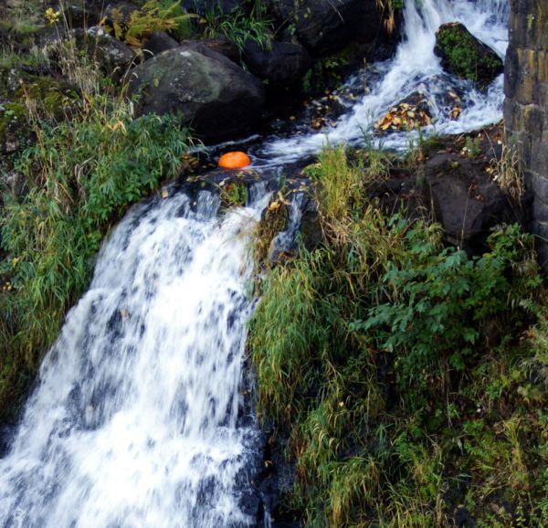 pumpkin waterfall