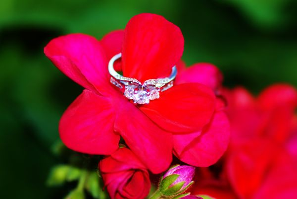 engagement flower