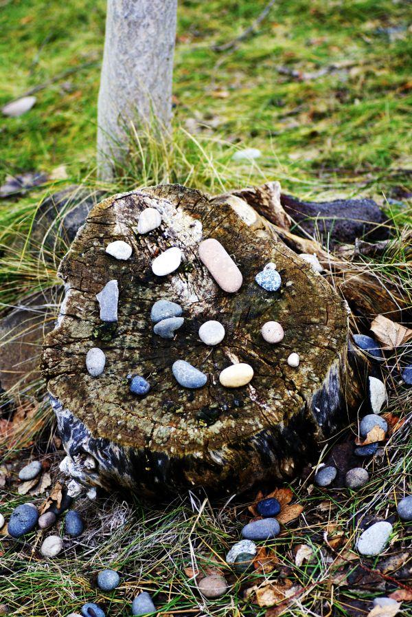 stony stump