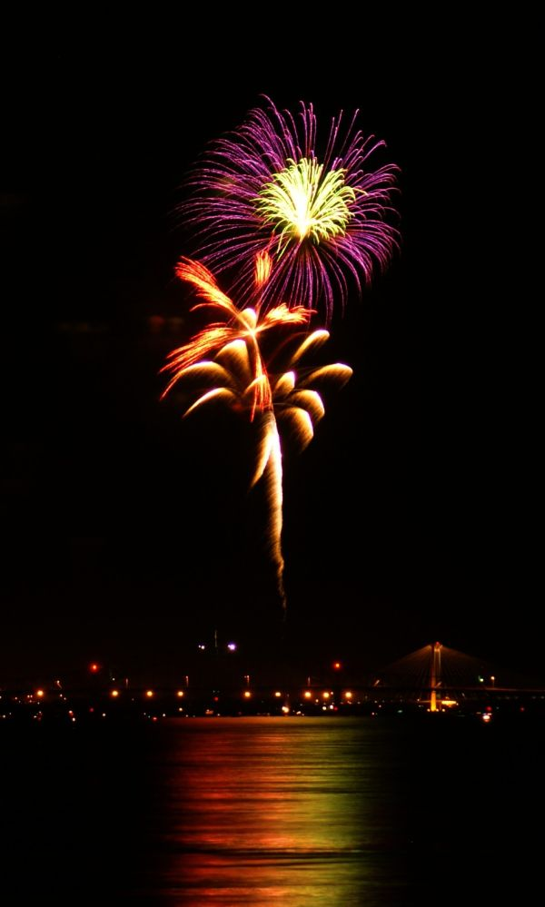 fireworks #7 flowering fireworks