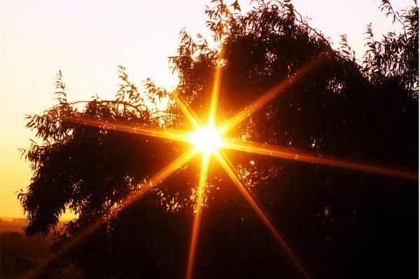 morning starburst