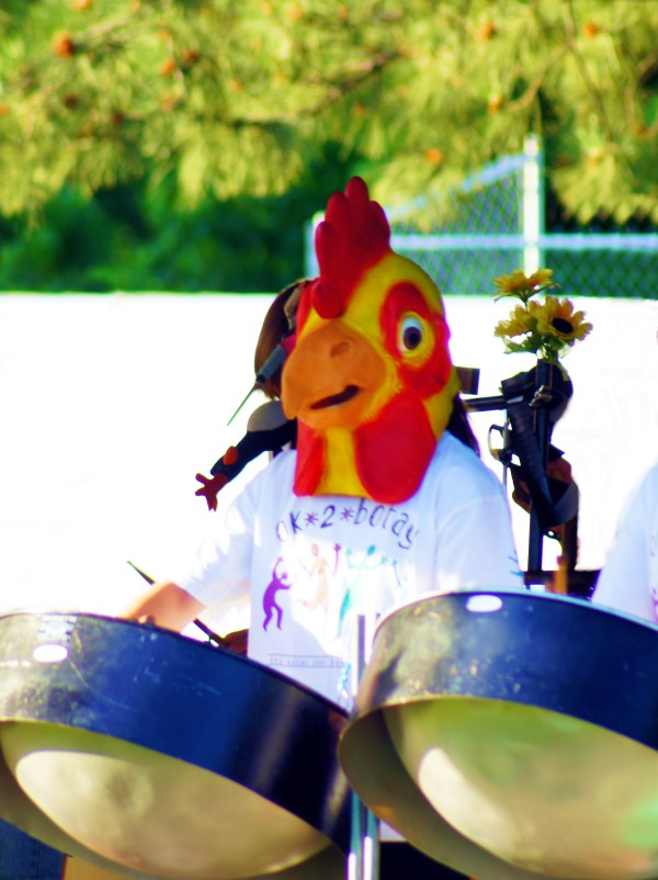 chicken drummer