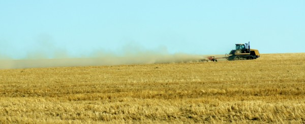 dust farmer