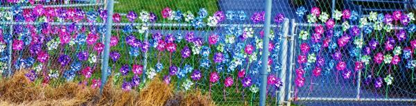 pinwheel fence