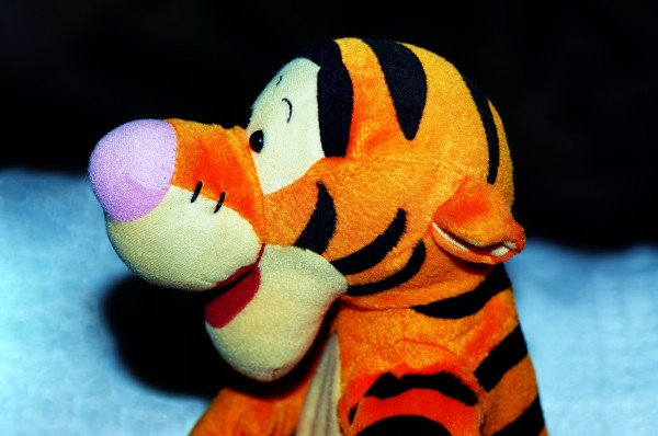the wonderful thing about tiggers i'm the only one