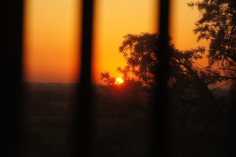 caged sunrise