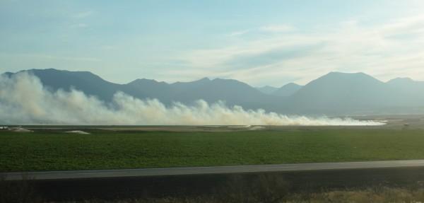 smoky field