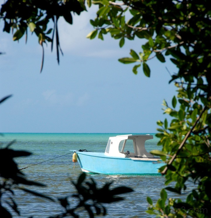 Blue Boat - Anegada, BVI