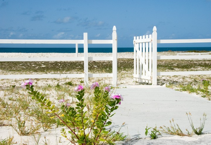 Anegada, BVI - Open Gate with Flowers