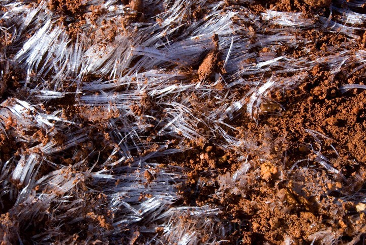 Ice Crystals in Red Clay