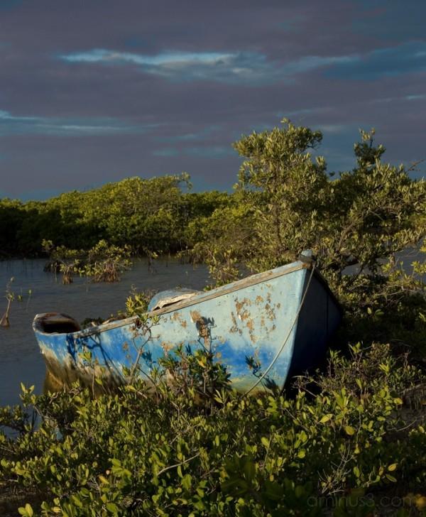 Anegada, BVI - Blue Boat Forgotten