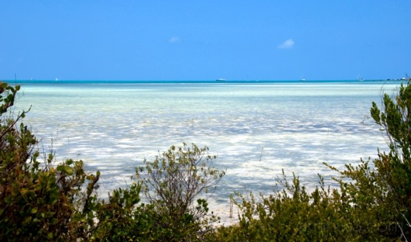 Anegada, BVI - True Colors