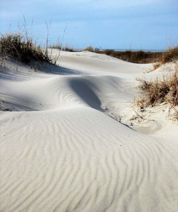 Lines and Designs:  Sensual Dunes