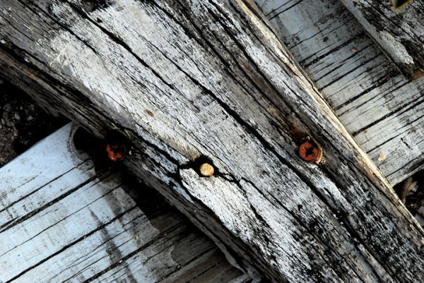 Wood and White - Fallen Fence