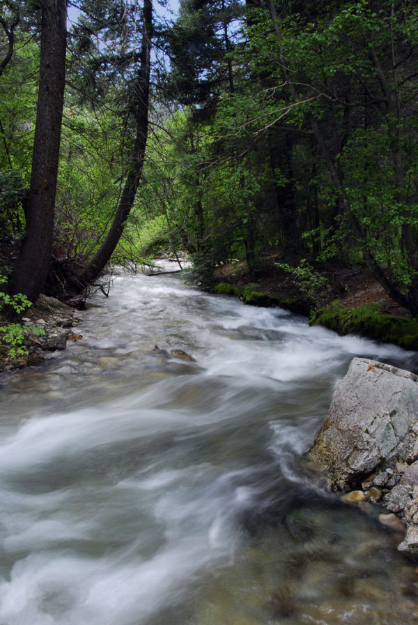 Year in Review:  Environmental Awareness