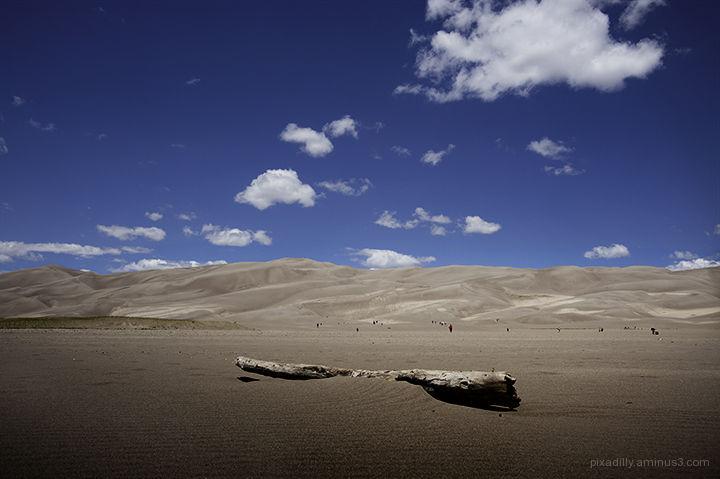Dune Visitors
